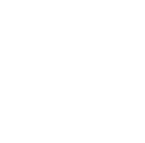 Africa's Big 7 Logo WHITE