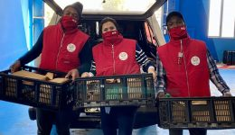 Yebo Fresh township food delivery service is booming
