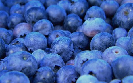 DEMAND FOR S.AFRICAN 'SUPERFOOD' BLUEBERRIES BOOMING