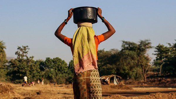 UN Women Standard Bank programme provides leg up for women farmers