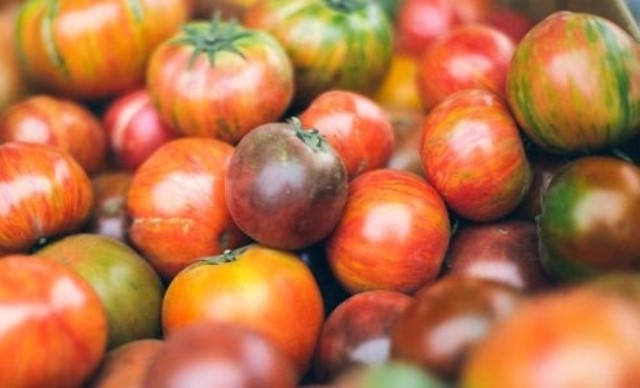 Why tomatoes are suddenly so expensive